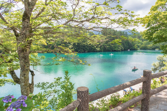初夏の五色沼(福島県・裏磐梯)