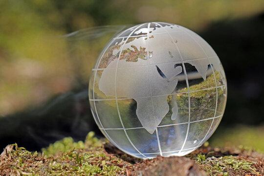 Weltkugel aus Glas im Wald
