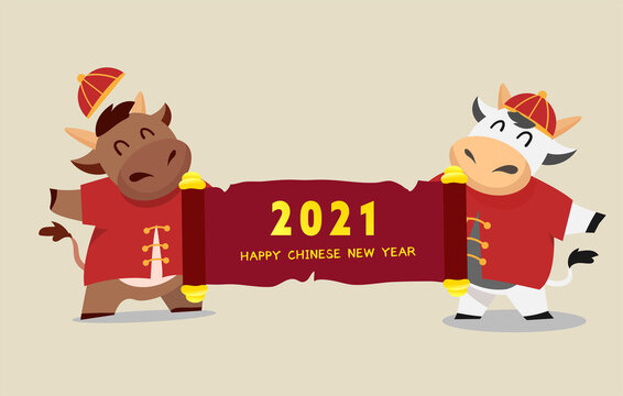 Happy Chinese new year 2021 Ox zodiac. Cute cow character in red costume and scroll.