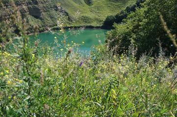 View of alpine summer forbs around karst mountain lake Shadhurei