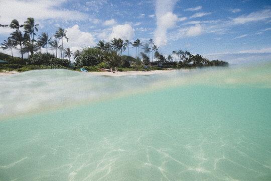 Under over ocean photo in Hawaii