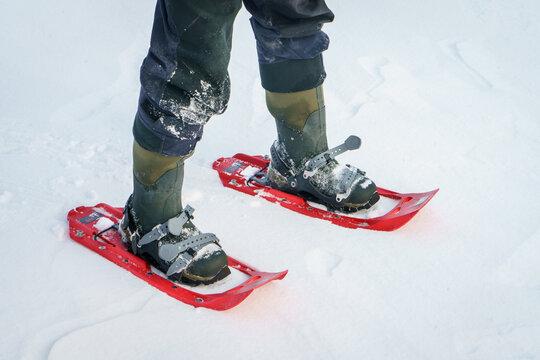 Snow shoes on glacier hike, taken on an Arctic cruise through North Spitsbergen, Svalbard and Jan Mayen