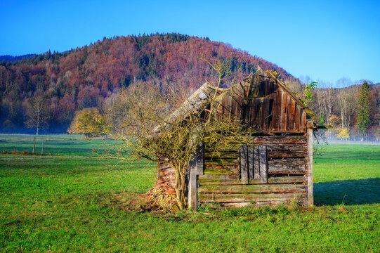 Alte halbzerfallende Holzhütte auf einer Viehweide vor den herbstlichen Ausläufern der Alpen.