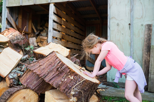 Young girl counting rings on a tree stump beside woodshed