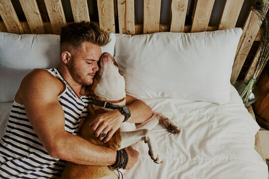 A young blond boy sleeping next to his dog in the bed