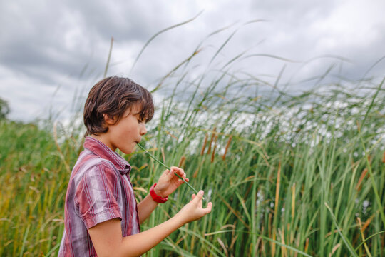 A boy stands by tall grass on a cloudy day playing a reed as flute