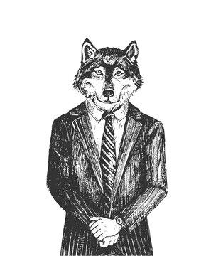 Wolf from wall street portrait