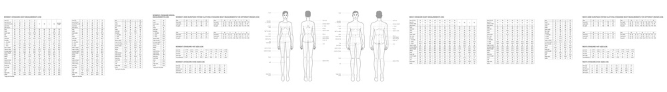 Set of men and women body parts terminology measurements and size charts Illustration for clothes and accessories production fashion 9 head male and female size chart. Human body infographic template
