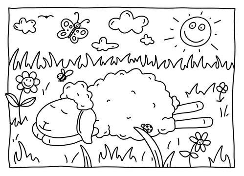 Ausmalbild Schaf
