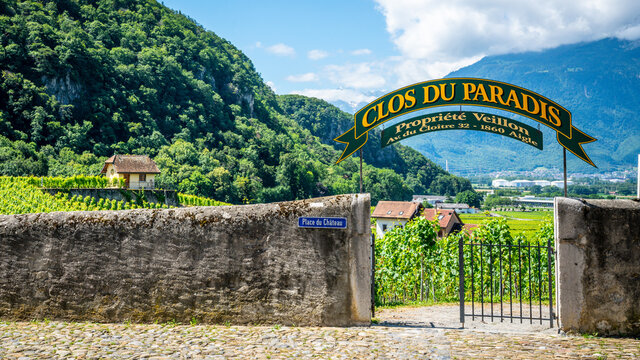 Veillon Clos du Paradis vineyard entrance scenic view with green vines during summer in Aigle Vaud Switzerland