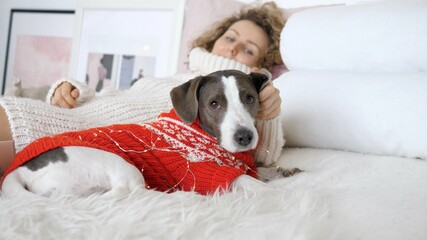 Tired dog and owner relax in white bedroom after New Year late night party. Happy moments together with family, friends and pets