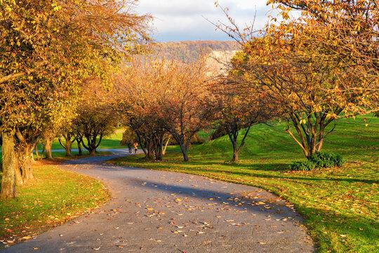 Herbstspaziergang im Stadtpark (Rheinaue Bonn)