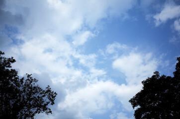 하얀 구름이 잔뜩 떠 있는 파란 하늘 Fotobehang