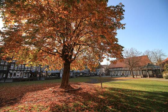 Herbst in Northeim; Am Münster mit Heimatmuseum