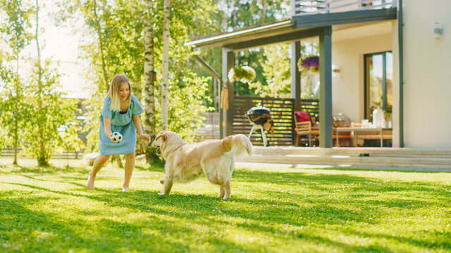 Cute Girl Has fun with Happy Golden Retriever Dog on the Backyard Lawn. She Plays Fetch with Football Ball. Happy Dog Plays with Toy Ball. Idyllic Summer House.
