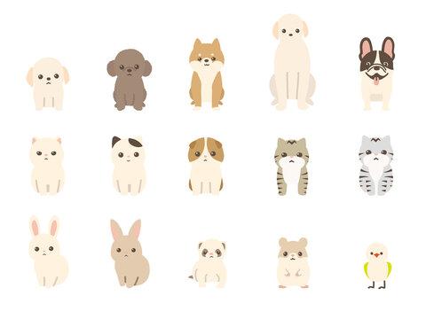 ペット 動物のベクターイラストセット 犬、猫、兎、小動物