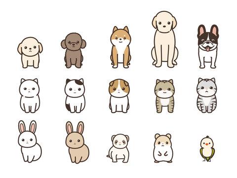 ペット 動物のベクターイラストセット 正面 犬、猫、うさぎ、フェレット、ハムスター、小鳥
