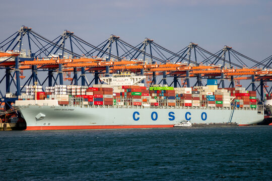 COSCO container ship being loaded by gantry cranes in the ECT Shipping Terminal in the Port of Rotterdam.