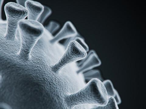 Corona Virus Detail
