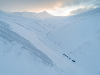 Dog sledding in the Arctic