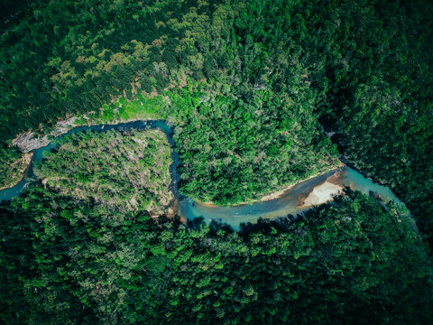 Aerial shot of a winding river in the green Arkansas wilderness