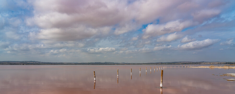 Wooden posts in the pink salt lake with reflection on water from clouds, Laguna Rosa, panorama