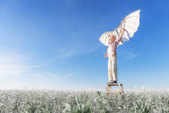 Little boy with wings in the field