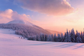 Winter forest. Awesome sunrise. High mountains with snow white peaks. Natural landscape with beautiful sky. Wallpaper background. Location place Carpathian, Ukraine, Europe.
