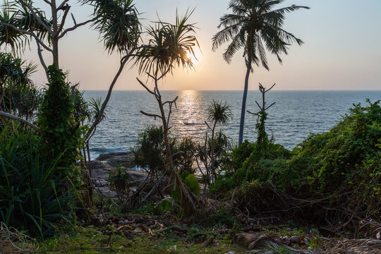 A tropical island with palm trees and blue ocean at sunset. Sri Lanka