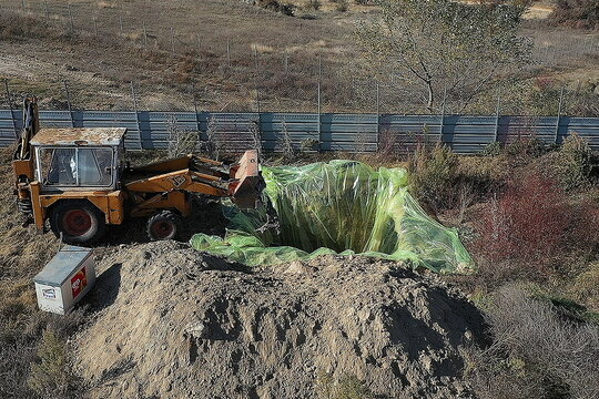 An employee of the Kozani municipality operates an excavator to dispose of culled mink, during the culling of the whole herd in a farm where numerous animals tested positive for the coronavirus disease (COVID-19), near the village of Kaloneri