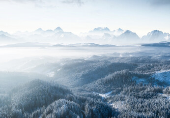 Aerial view on forest and mountains in winter time. Natural winter landscape from air. Forest under snow in winter time. Landscape from drone.