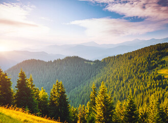 Wall Mural - Attractive view of green mountains in summer sunny day.