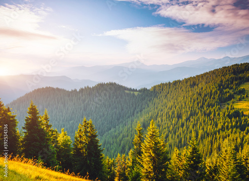 Wall mural Attractive view of green mountains in summer sunny day.