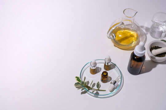 Herbal medicine with essential oil and herb on white background. Flat lay apothecary and natural product.