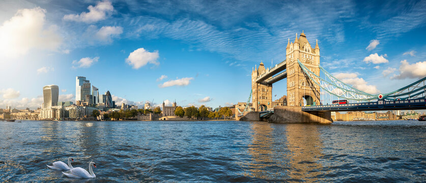 Panoramic view of the modern skyline of London, United Kingdom, from the Tower Bridge to the City on a sunny autumn day with calm Thames river