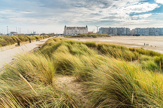 View of the coastline of Zeebrugge combined with the hotel and grasses that lead the eye.  Walking path, flanders coast, great pic for toerism belgium coast, best of flanders