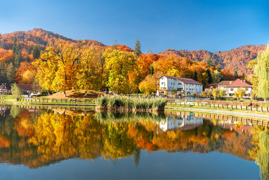 Landscape of a colorful forest reflected on a lake in fall season in Noua Park, Brasov