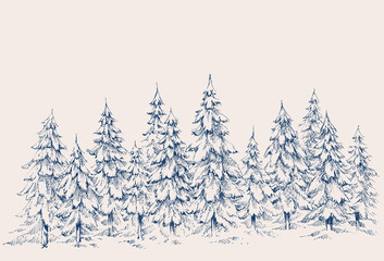 Pine forest hand drawn border. Winter landscape