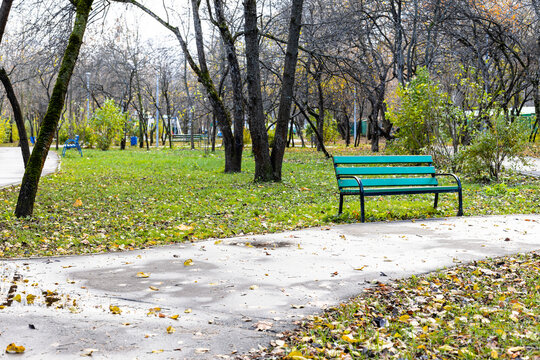 wet path and empty green bench in public city garden on overcast autumn day