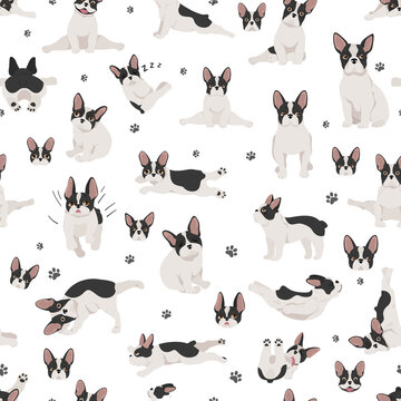 French bulldog seamless pattern. Dog healthy silhouette and yoga poses background