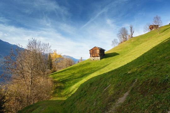 Wanderweg durch eine herbstliche Almwiese in Österreich