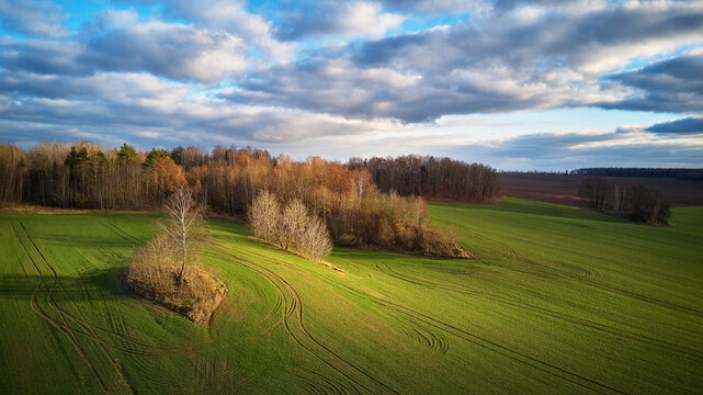 Agricultural light and shadow background. Tranquil farmland scene