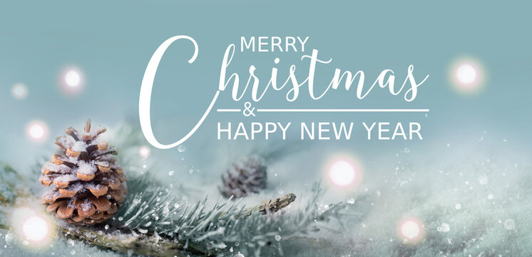 Merry Christmas and Happy New Year  -  Greeting Card - Xmas Card - Magic Snow Landscape with pine cones