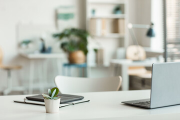 Minimal background image of inviting empty workplace with white desk and succulent plant in...