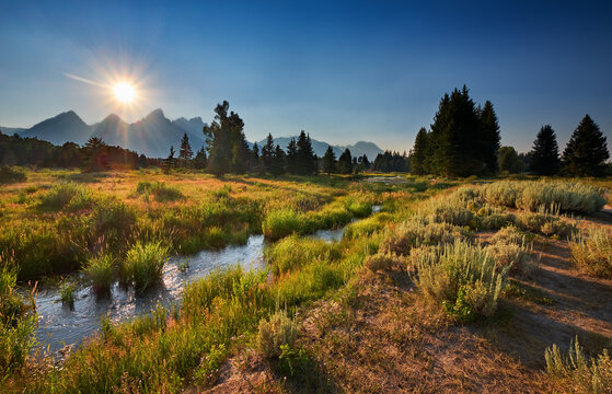eaver Dam area on the Snake River along the trail from Schwabacher Landing, Moose, Wyoming