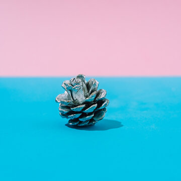 Abstract pastel colorful pink and blue backdrop with silver pinecone. New Year Party, winter concept and Christmas aesthetic.