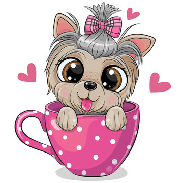 Yorkshire terrier with a bow is sitting in a Cup of coffee