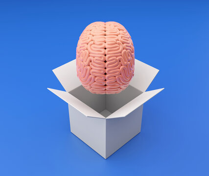 3d Brain comes out of a white box. 3d render illustrations with clipping path.