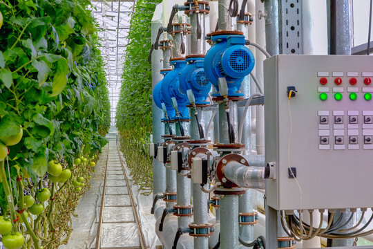 Management equipment industrial greenhouse to grow tomatoes. Monitoring sensors.