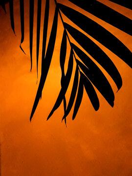 Plants Silhouette Over Orange Wall